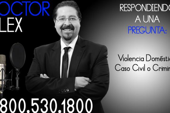 Violencia Doméstica, Caso Civil o Criminal